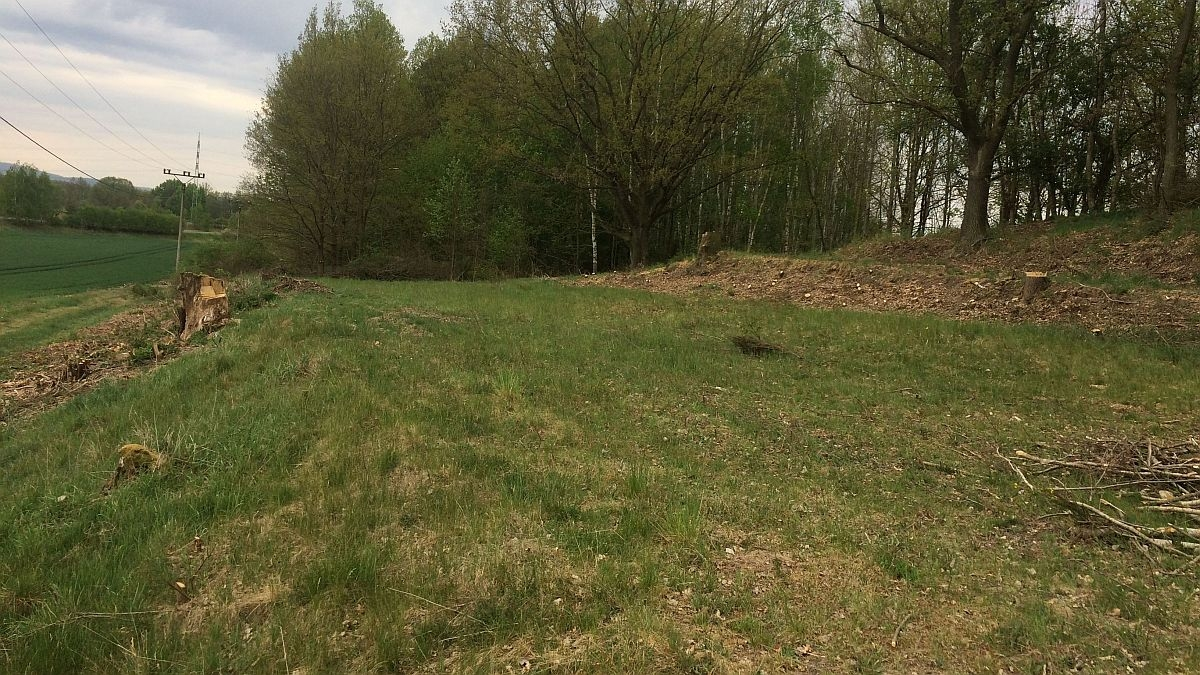 2stavební pozemky vOdravě uChebu, část Obilná.